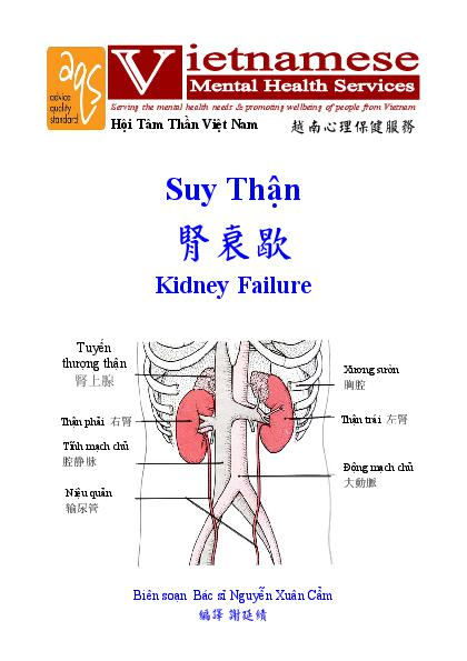 Kidney Falure Vn Cn